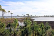 Little Lagoon (on left) and Gator Lake (on right)