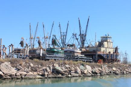 Shrimp boats in dry dock