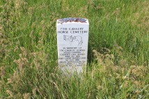 Mass cemetery for horses lost at Custer's last stand