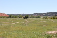View across Prairie Dog Town