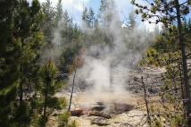 Arch Steam Vent