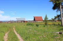 Cow barn and corral