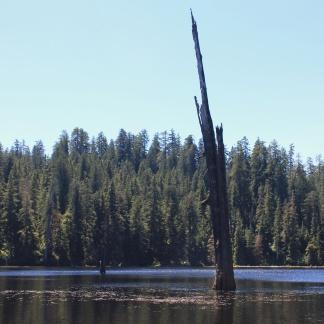 Irely Lake