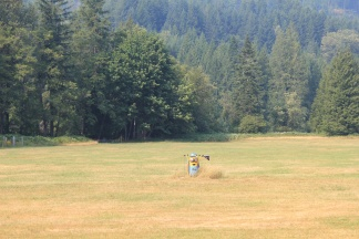 Minion in field