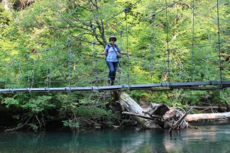 Jan on wooden suspension bridge in Grove of Patriarchs