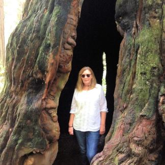 Jan in hollow tree