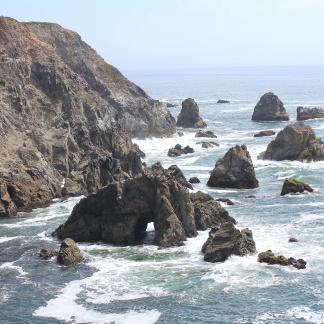 Rocks below Bodega Head