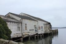 Abandoned whard