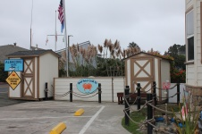 Spud Point Crab Co.