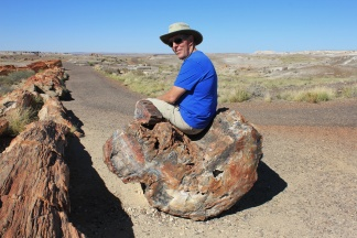 Phil sitting on petrified log on Crystal Forest Trail