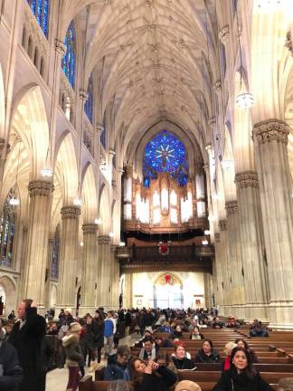View from back of St. Patrick's Cathedral