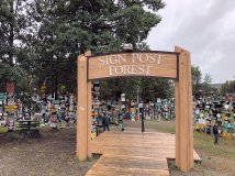 Entrance to the Sign Post Forest