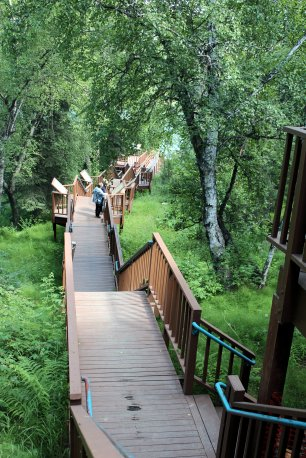 Fishwalk to Kenai River