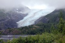 View of Exit Glacier