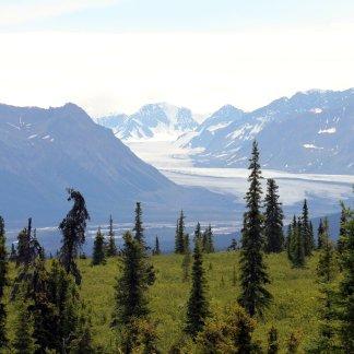Nelchina Glacier