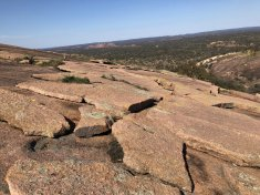 View of hillside from Enchanted Rock
