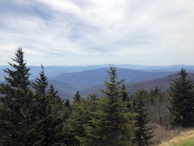 View ffrom Clingmans Dome Trail