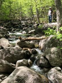 Phil pondering path across stream