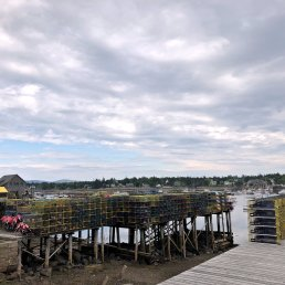 Stacks of lobster traps in Bernard