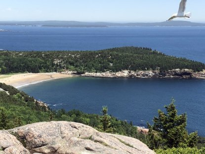 View of Sand Beach from Gorham Mountain trail