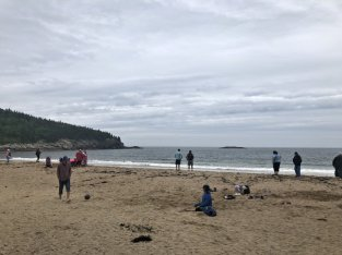 Sand Beach, a geological rarity in Maine