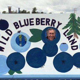 Phil at Wild Blueberry Land