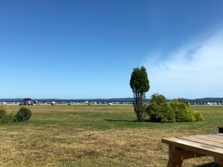 View of the bay from our site