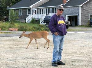 Deer strolling past Phil
