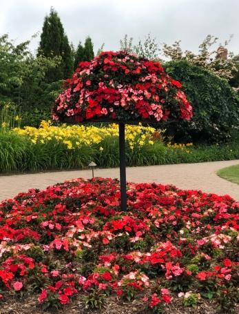 Plants at Kingbrae Garden