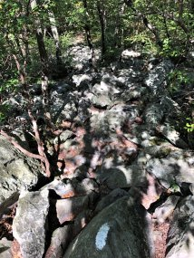 Section of trail over Wolf Rocks