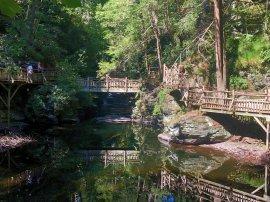 Bridges along Upper Canyon