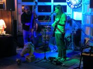 Royal Horses performing at Big Beach Brewing Co.