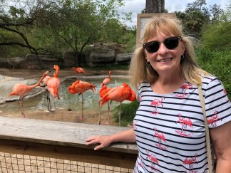 Jan with the flamingos
