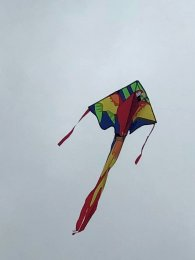 Our new kite