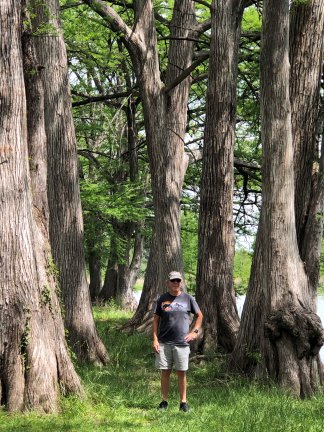 Phil among the big trees